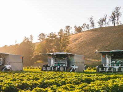 Automated harvester can look to the future